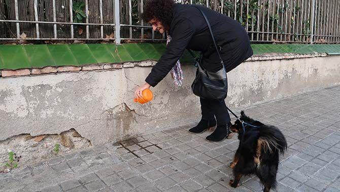 Resultado de imagen de botella de agua orines de perro